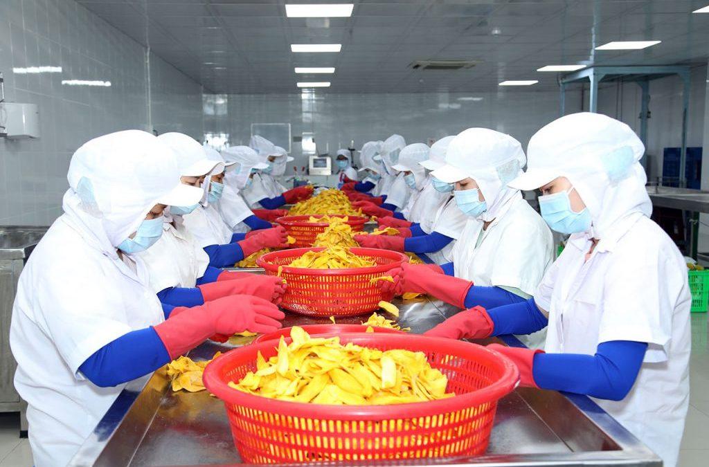 CEO Lương Gia kỳ vọng nâng tầm nông sản việt