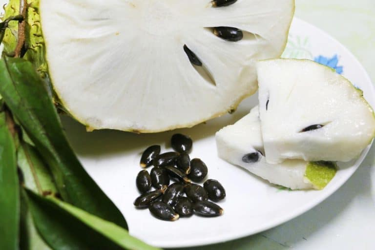 How to make dried soursop at home