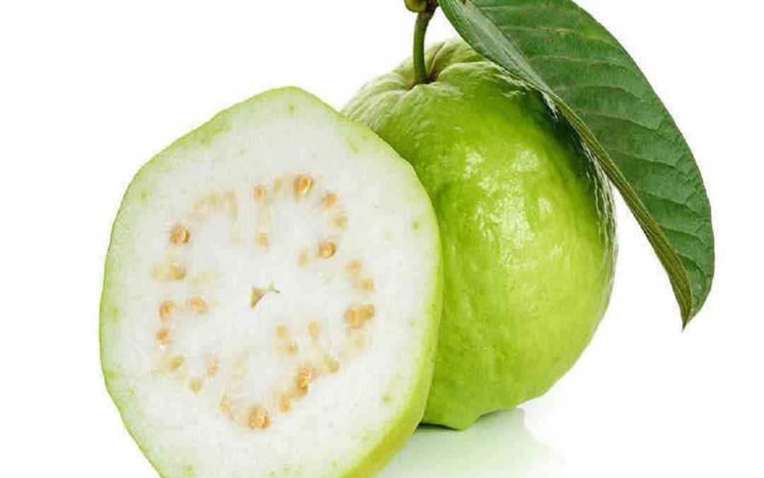 Пищевая ценность и польза для здоровья от гуавы