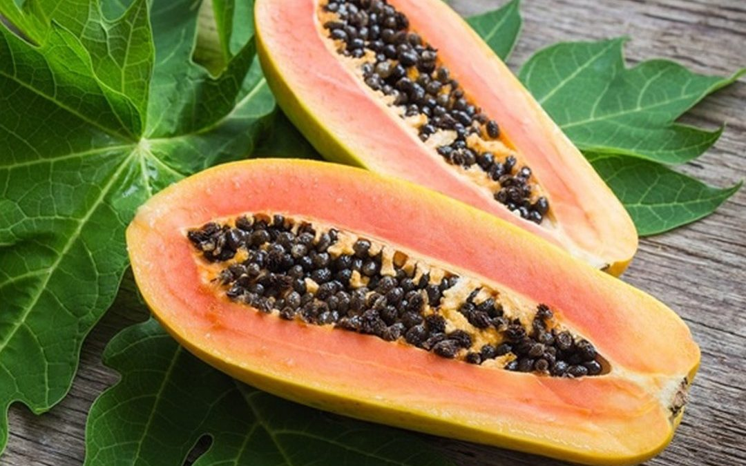 The nutritional content and health benefits of papaya