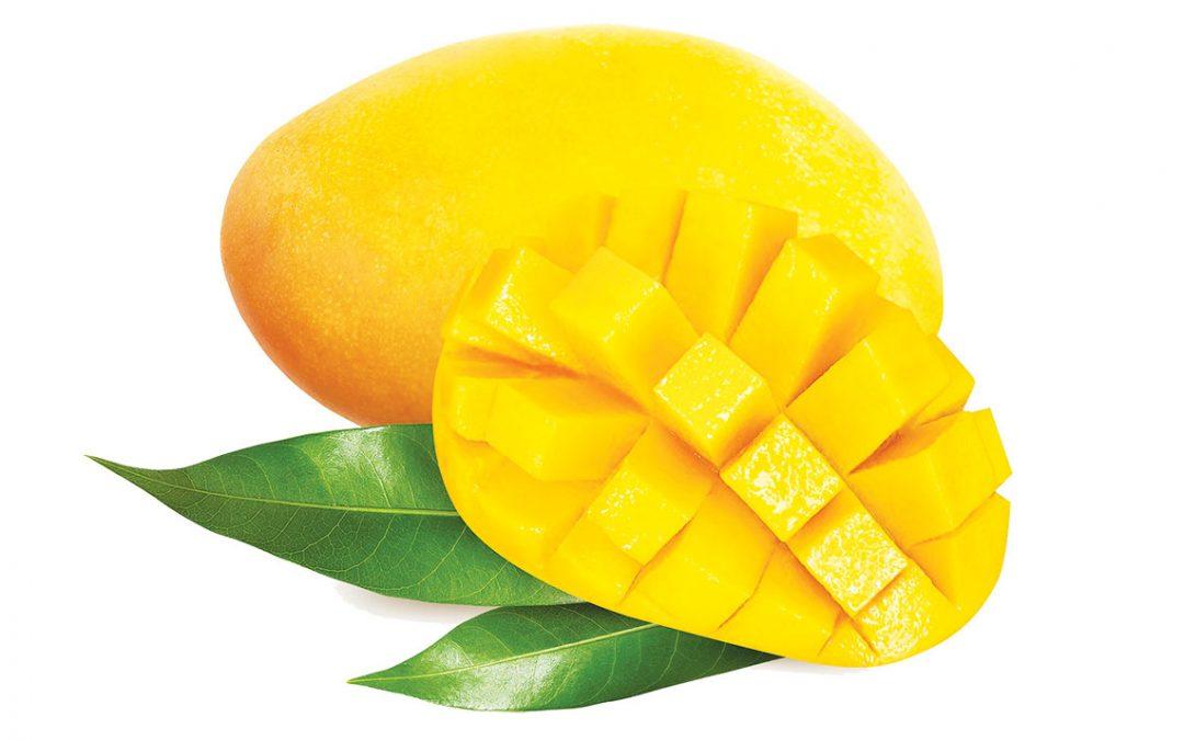 Пищевая ценность и польза манго для здоровья